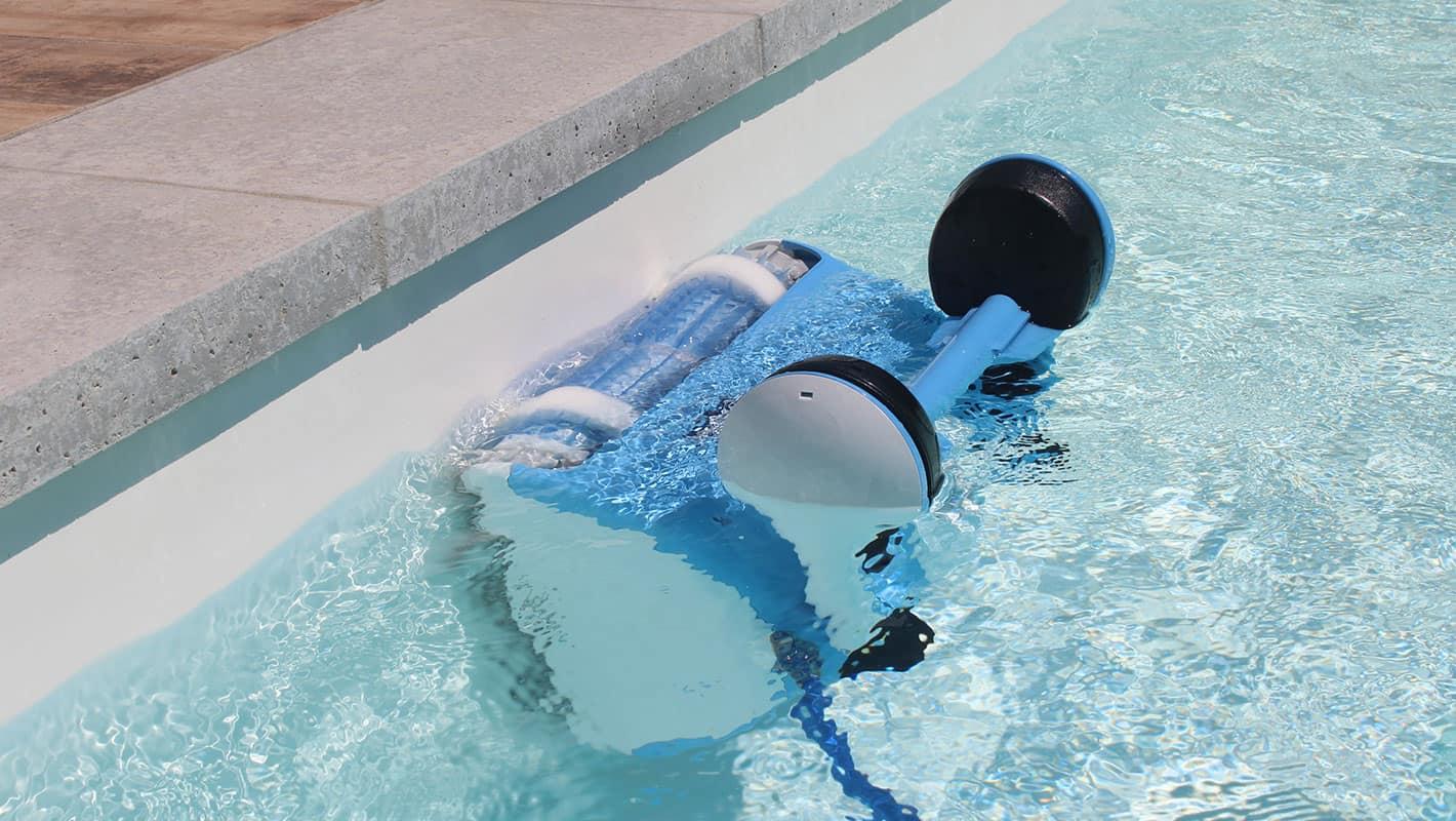 Dolphin Nauty TC