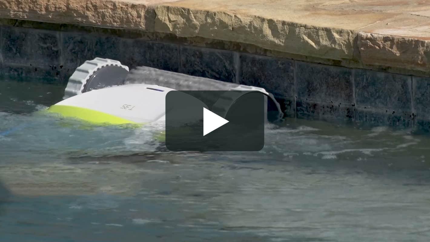 Dolphin t35