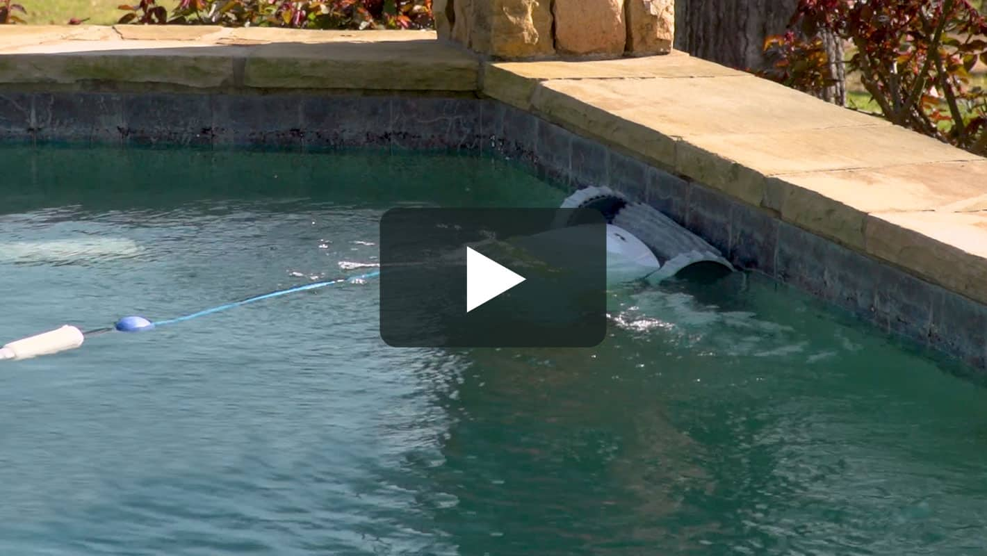 Dolphin t45