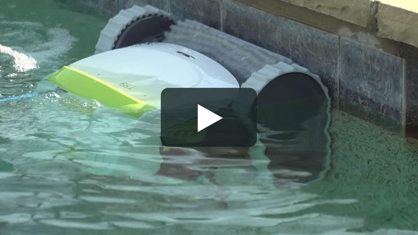 Dolphin t55i